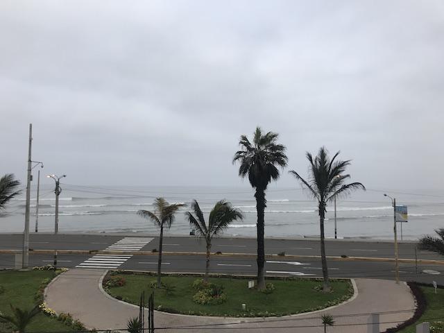 朝のワンチャコの波