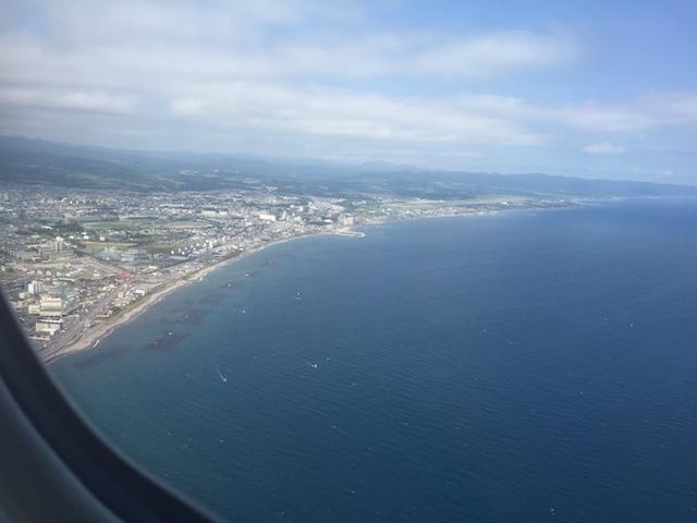 JAL587から見た函館